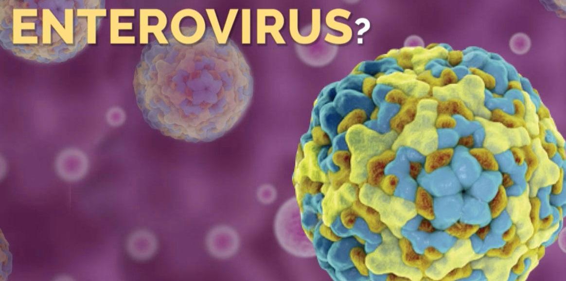 enterovirus-1463678555984